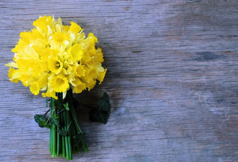 12 Flower Essences For The 12 Signs Of The Zodiac