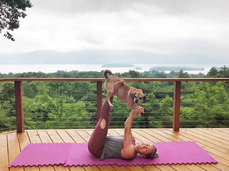 These Photos Of People Doing Yoga With Goats & Puppies Will Make You Ridiculously Happy