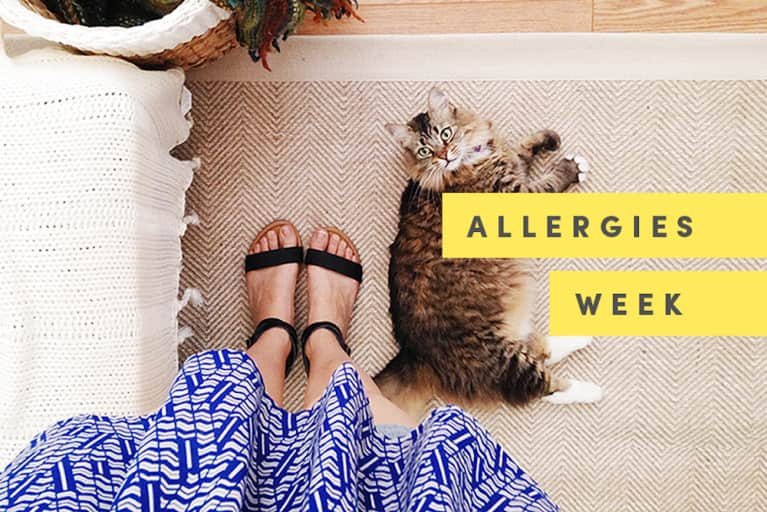 Itchy Eyes, Be Gone: A Room-By-Room Guide To Creating An Allergen-Free Home
