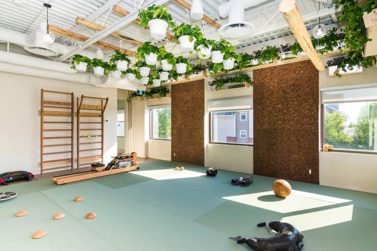 Gyms Across The Country Are Getting An Eco-Friendly Makeover