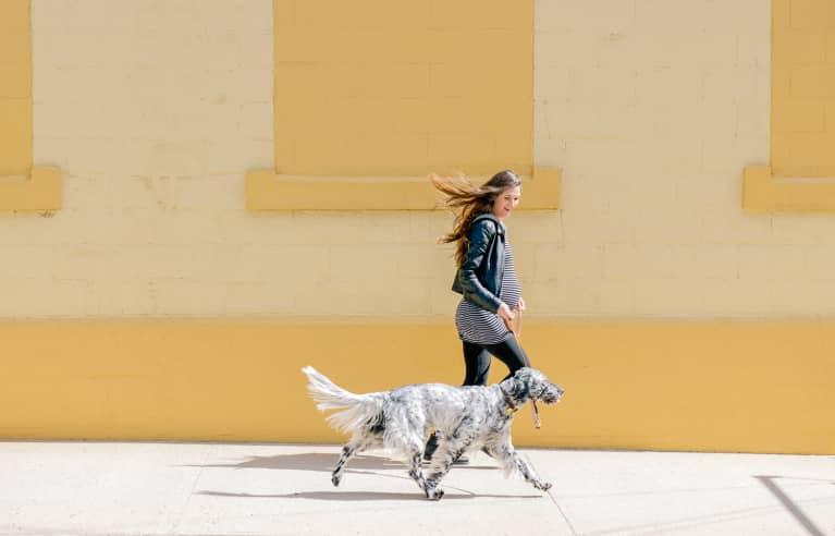孕妇散步与她的狗