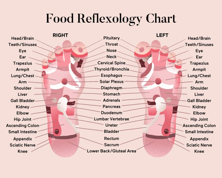 Foot reflexology chart with pressure points labeled