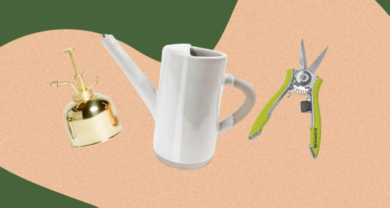 an arrangement of gardening tools: watering can, mister, and scissors