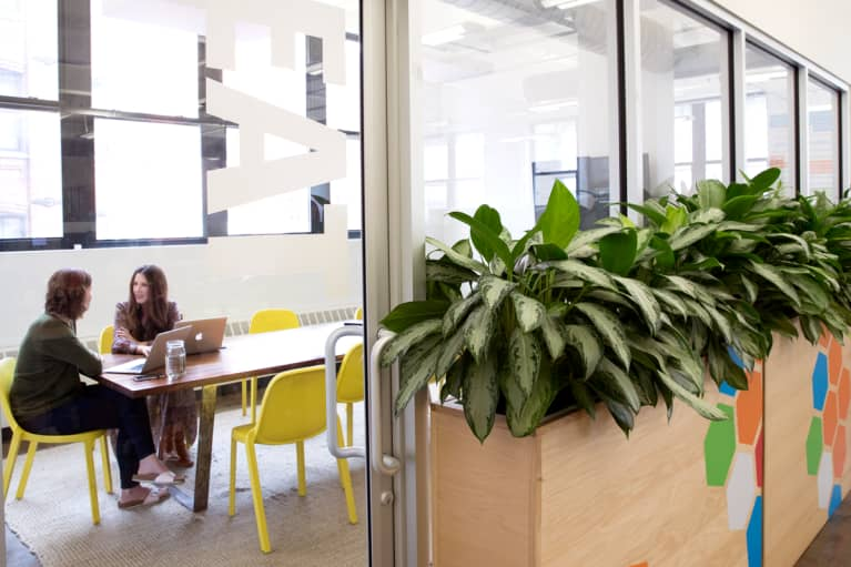 meeting room in an office with greenery