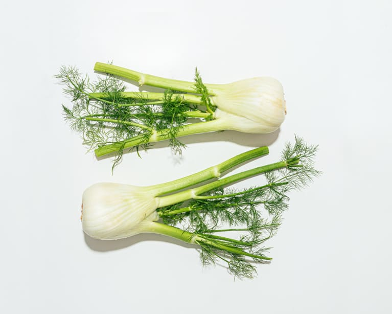 Fresh Fennel on a White Background