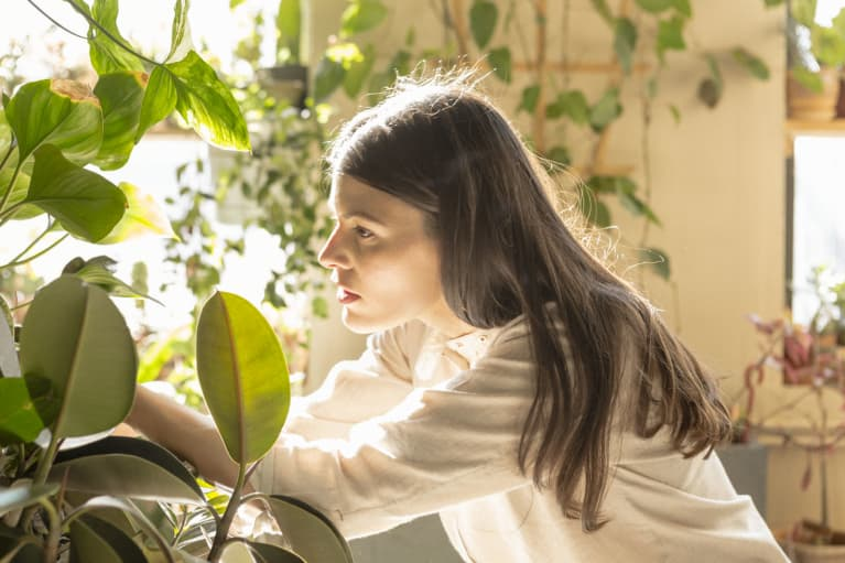 The Magical Thing That Happened When This New Yorker Kept Buying Houseplants