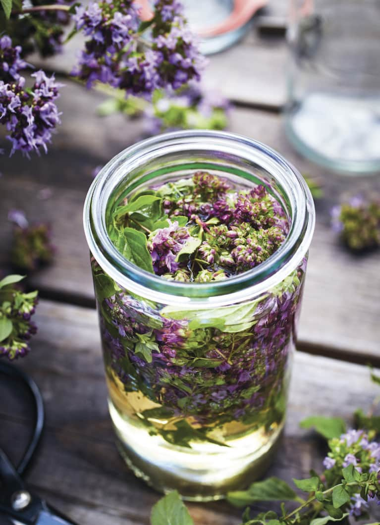 Oregano Flower-Infused Vinegar To Boost Your Immune System