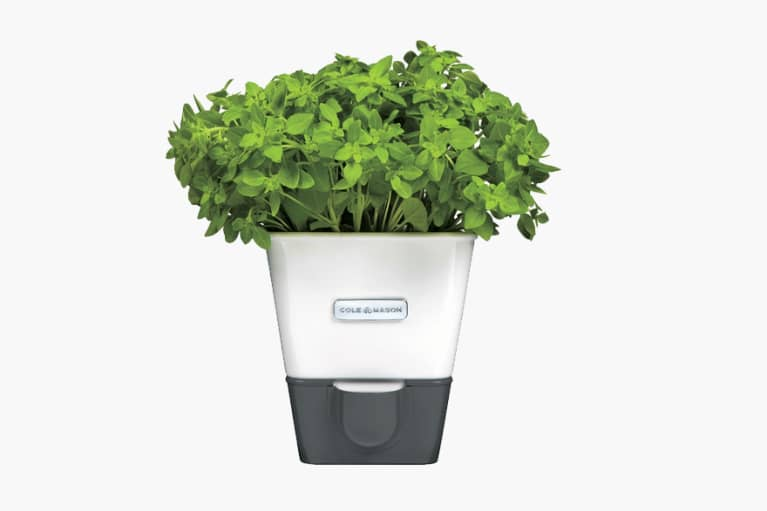 <p>Self-Watering Potted Herb Keeper</p>