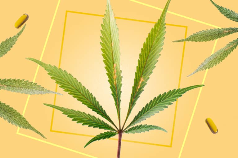 Hemp myth haters: 5 myths about the plant that we'd to be debunked