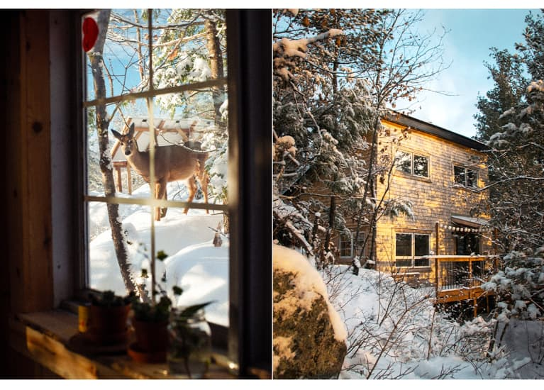 snow-covered cabin and view of deer out the window