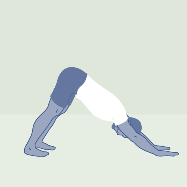 Downward Dog for Muscle Building