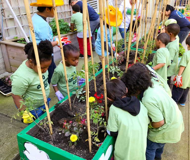 How This Elementary School In The Bronx Is Using Farming As A Vehicle For Change