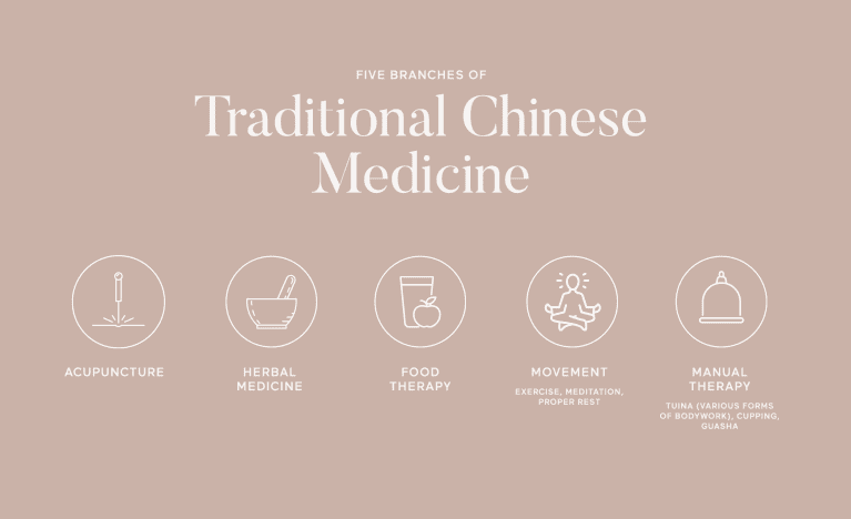 an illustration of the five branches of TCM: acupuncture, herbal medicine, food therapy, movement, and manual therapy.