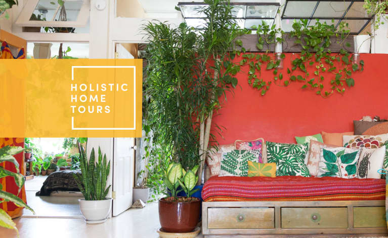 This One-Bedroom Apartment Has 600+ Houseplants. Let's Take A Tour