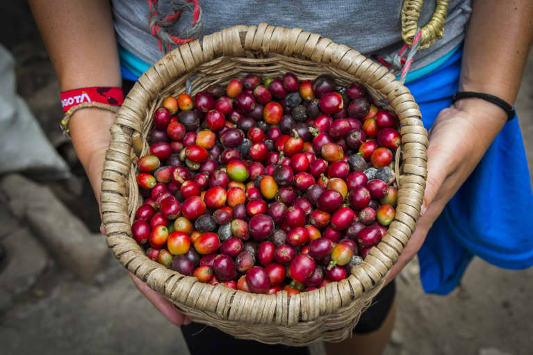 How To Help Save The World With Your Next Cup Of Coffee