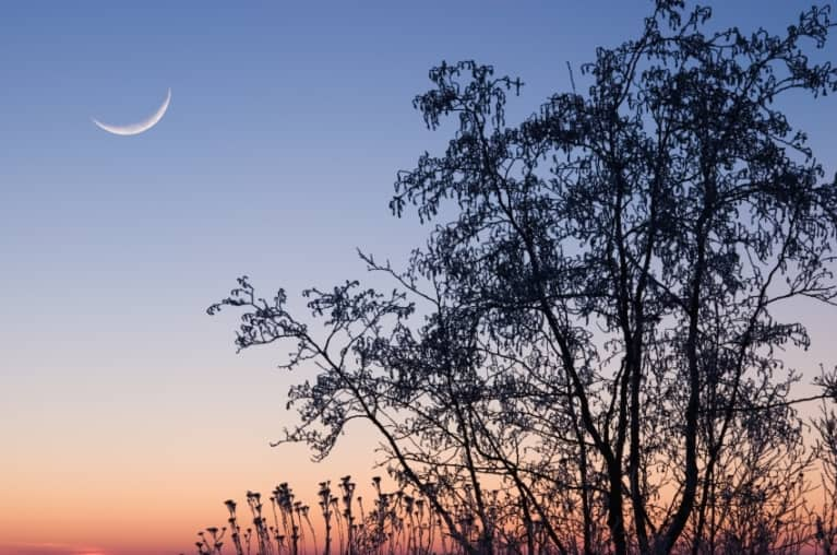 How To Harness The Power Of Tonight's Sky With A New Moon Circle