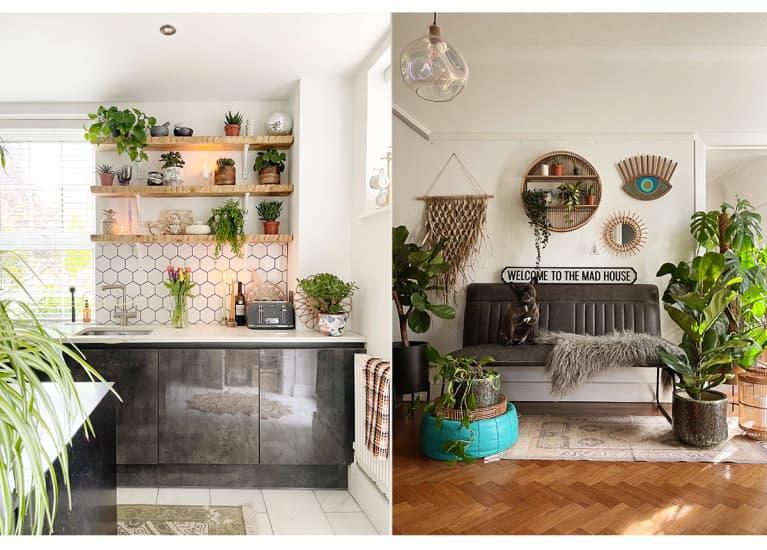 sleek kitchen next to dog on black soga