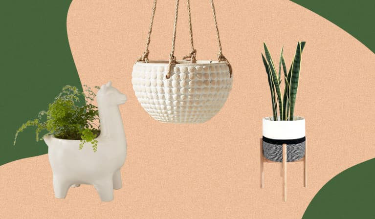 Houseplant pot arrangement: hanging pot, alpaca pot