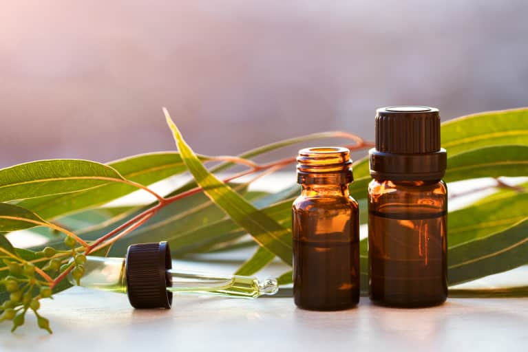 Discover Eucalyptus Oil's Potent Health Benefits, Plus How To Use It For Pain Relief, Healthy Hair & Colds