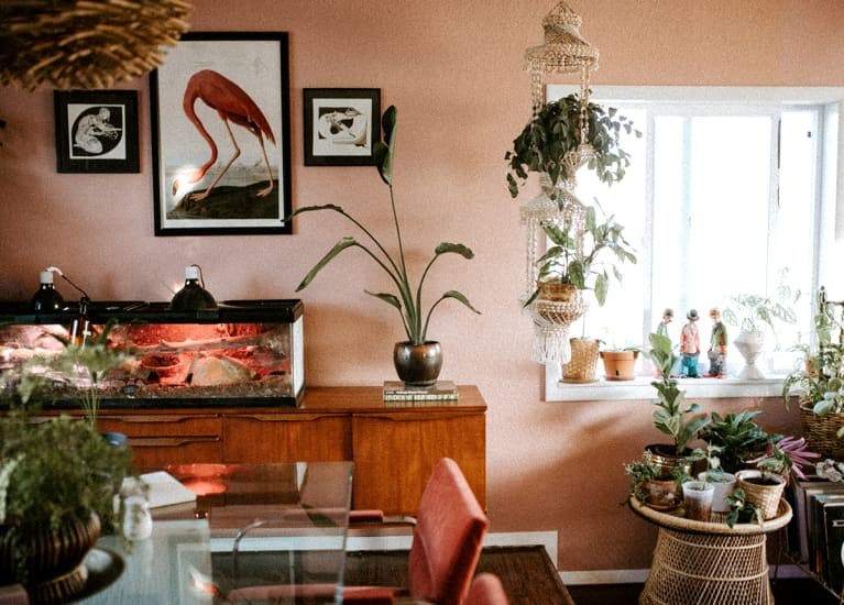 living room and kitchen with flamingo print hanging on wall and lots of plants