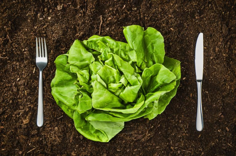 Want Healthier Food And A Better Environment? Soil Is The Answer