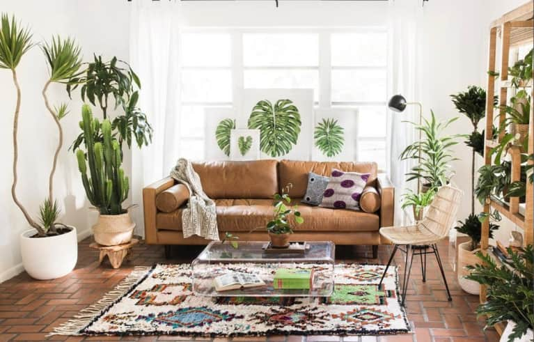 Plant-Inspired Home Decor That's Impossible To Kill