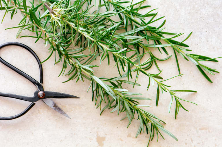 rosemary turns your meals into super recipes