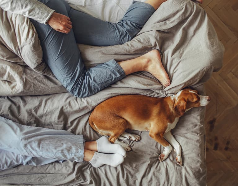 8 Sleep-Inducing Bedtime Rituals For Better Rest