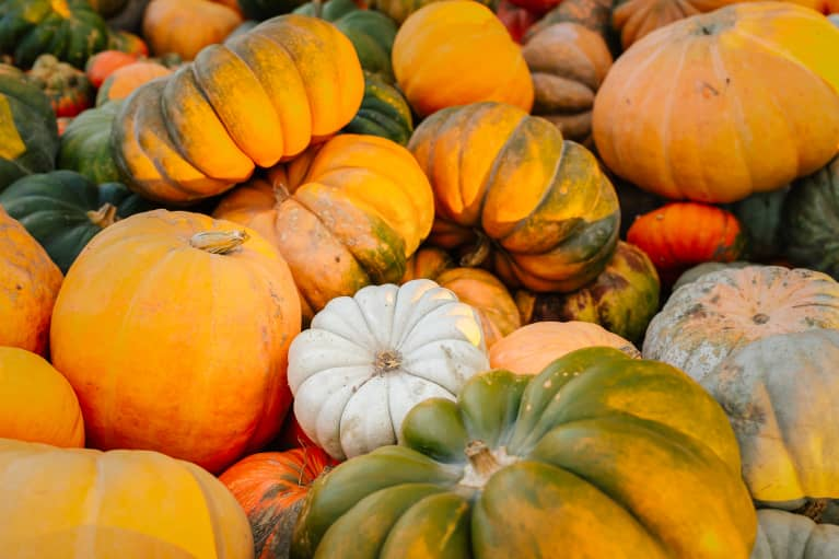 Over Pumpkin? Here Are 4 Other Gourd-geous Squashes + How To Cook Them