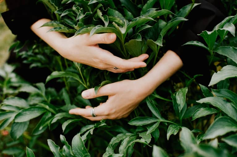 Unrecognizable woman's hands touching plants