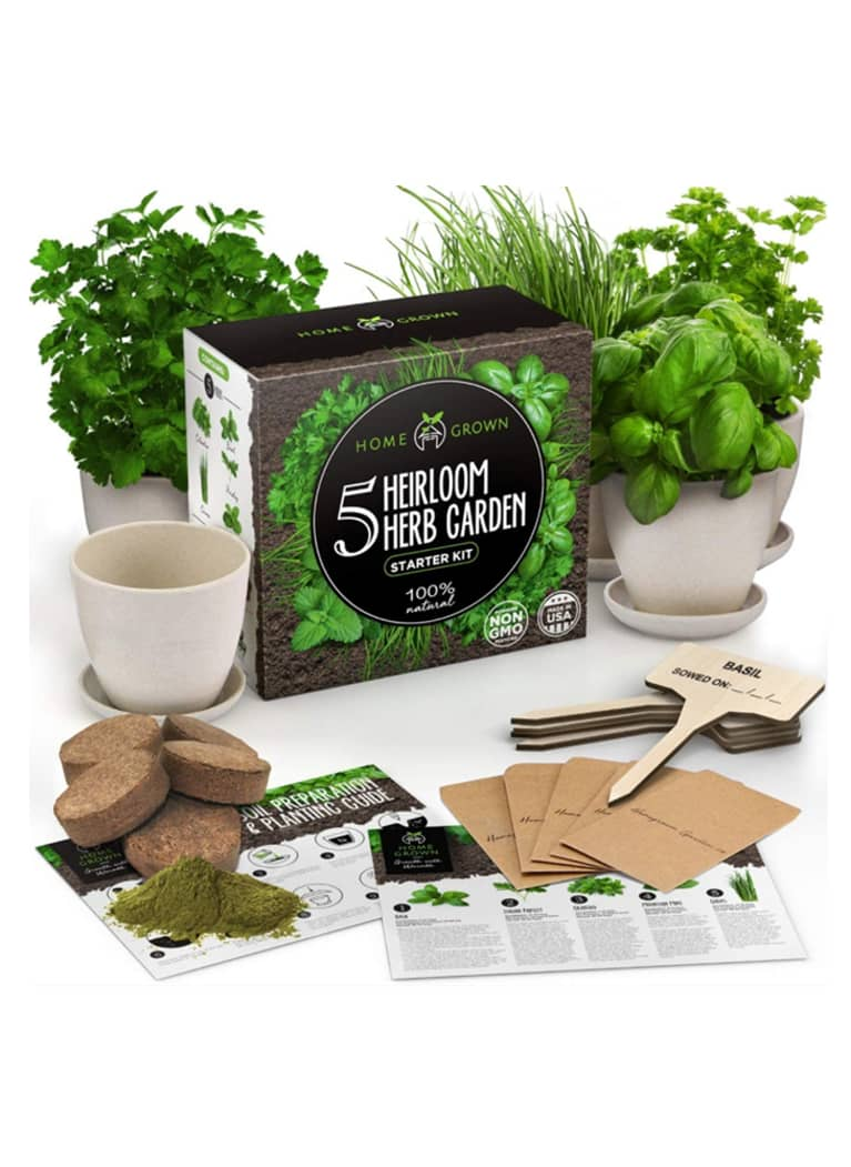 HomeGrown herb garden kit