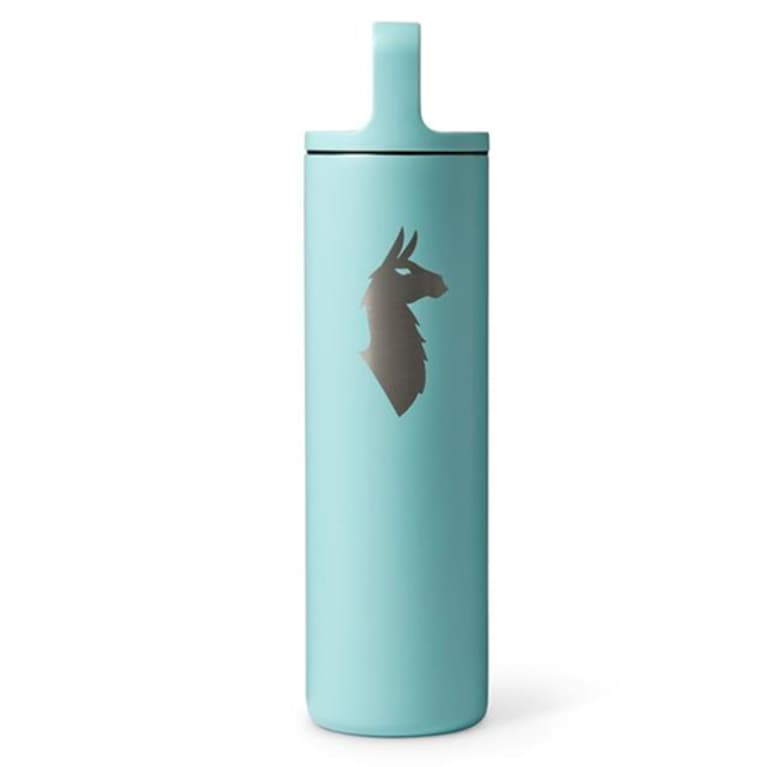 teal water bottle with llama design