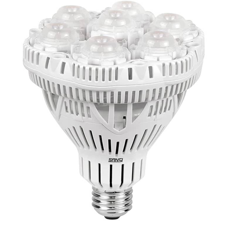 light bulb for growing flowers