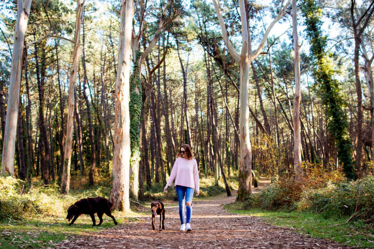 The 7 Gut-Healing Strategies That Make A Healthy Gut Simple