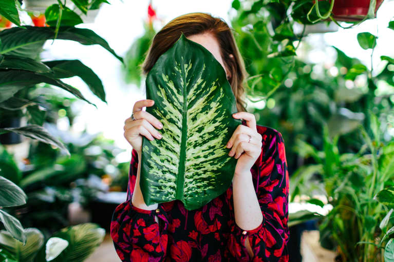 woman with big leaf in greenhouse