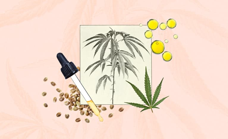 An illustration of the components of CBD oil