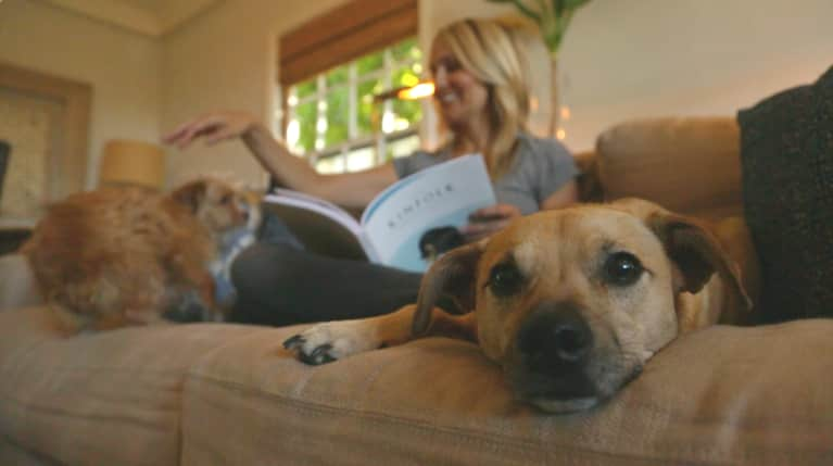 10 Things Only Pet Parents Understand