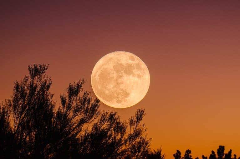 Full Moon Against Orange Sky