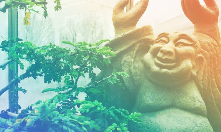 3 Zen Principles That Will Rock Your World (And Make You Happier!)