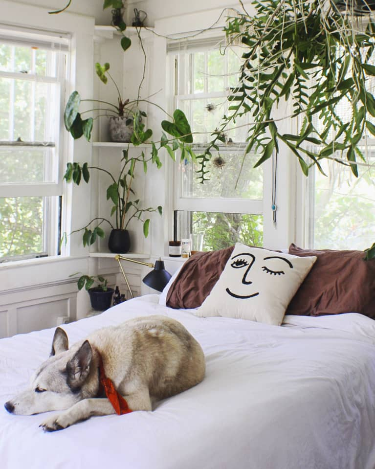 These 10 Homes Are Proof That You Can Never, Ever Have Too Many Plants