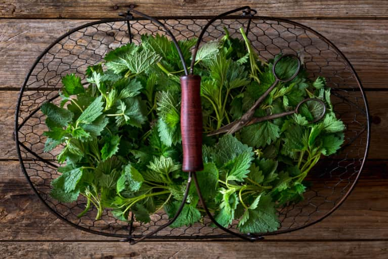 Beat Your Hangover Naturally With These Healing Herbs