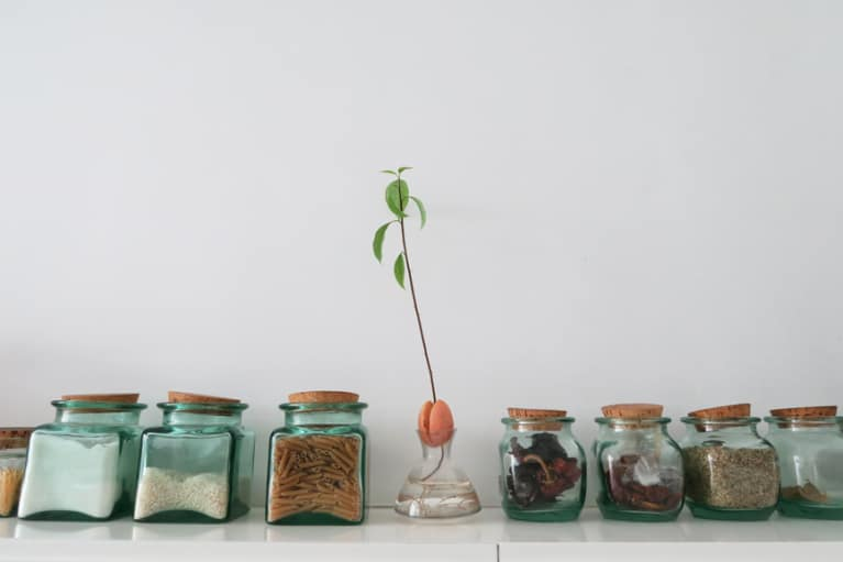 How To Stock A Plant-Based Pantry: Advice From A Dietitian