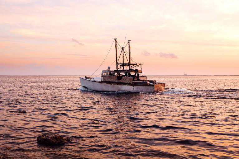 THIS Is The Best State To Buy Your Seafood From