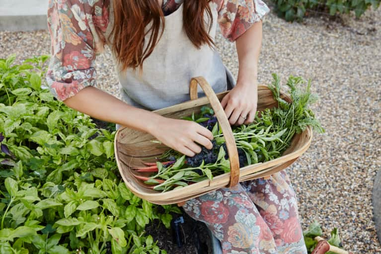 Grow Your Own Medicine: 8 Essential Herbs For Springtime