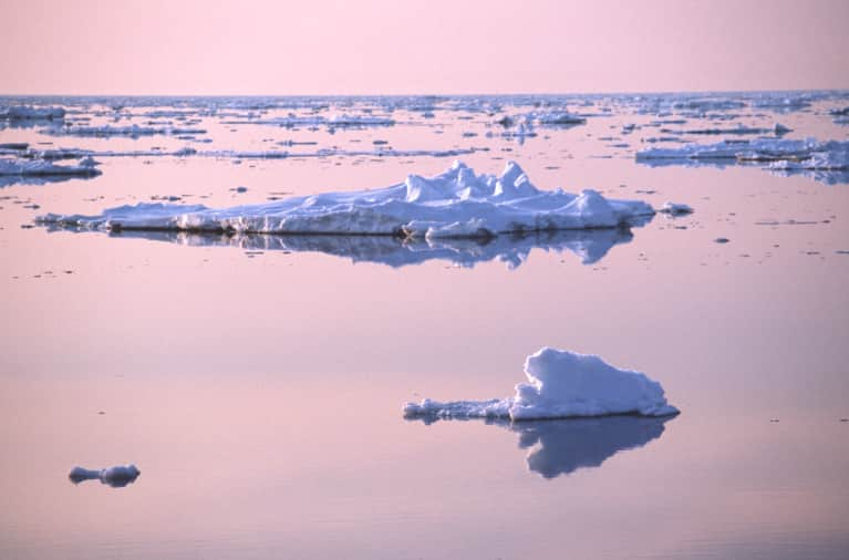 Top Tips For Dealing With A Climate Change Denier
