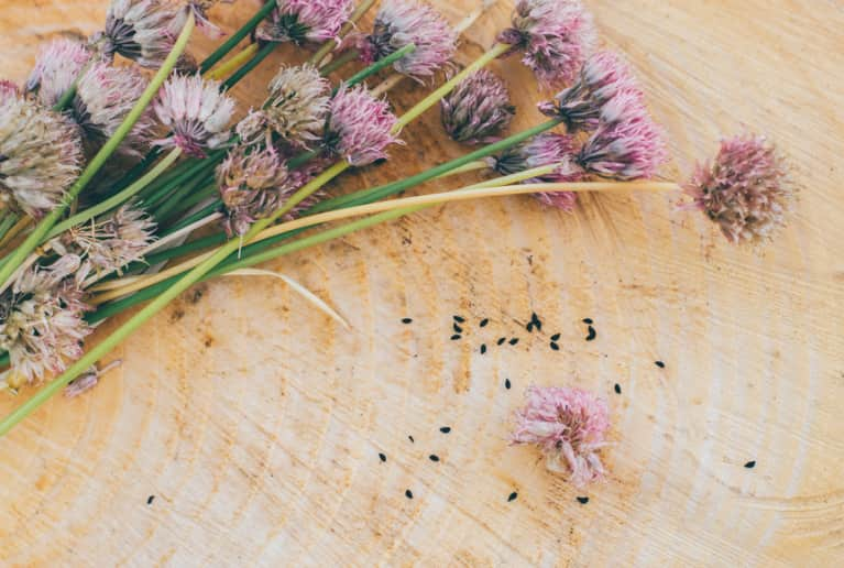3 Ancient Herbal Cleanses That Show The Deeper Meaning Of Detoxing