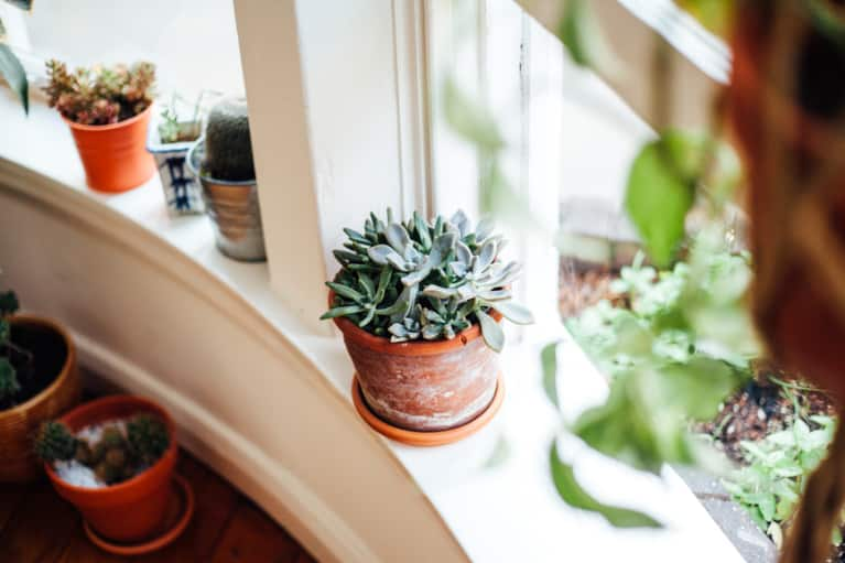 The Feng Shui Rebalance You'll Want To Do At Home ASAP