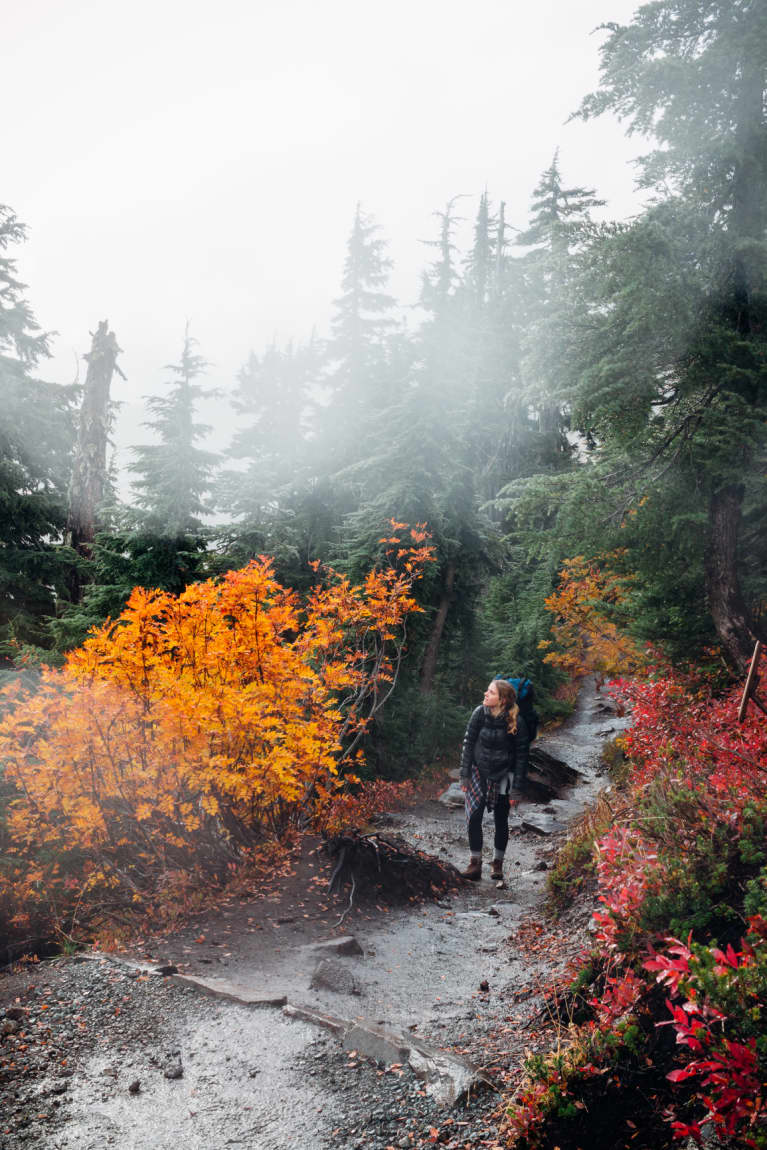 Everything You Need To Know To Have The Best Fall Hike Ever