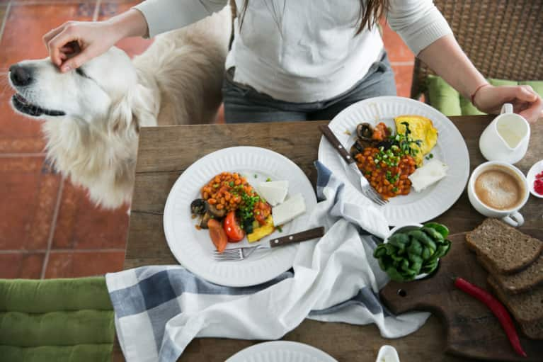Bond With Your Dog By Making This Nutritious Make-At-Home Pup Paella