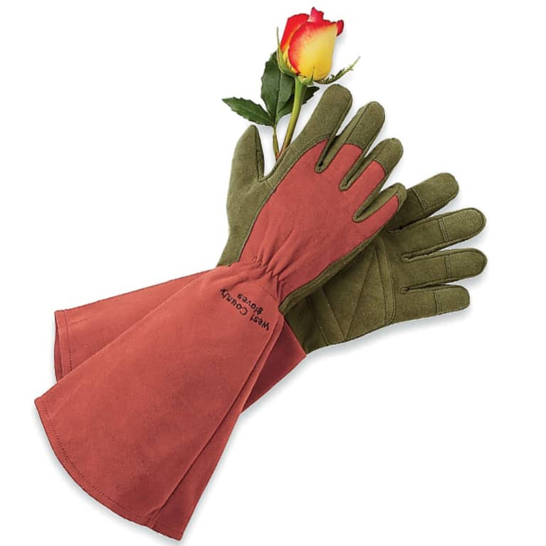 red gardening gloves holding a rose